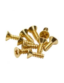 Blackriver First Aid Fingerboard Truck Screws